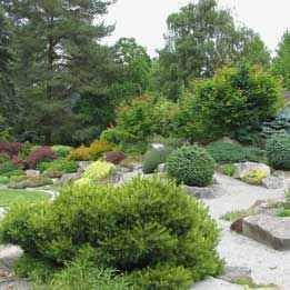 Bellevue Botanical alpine rock garden